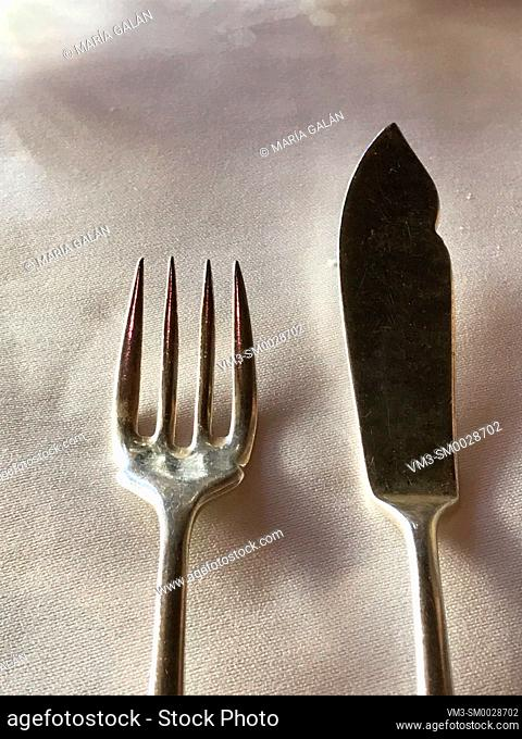 Fork and knife for fish