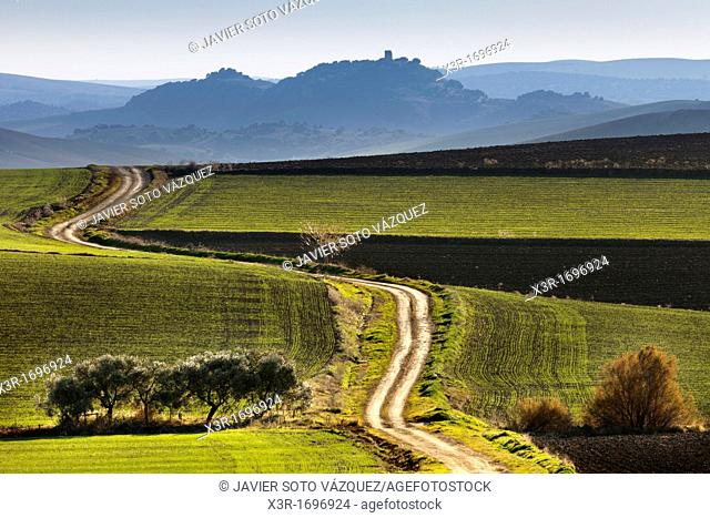 Andalucia lights in rural landscapes and agricultural