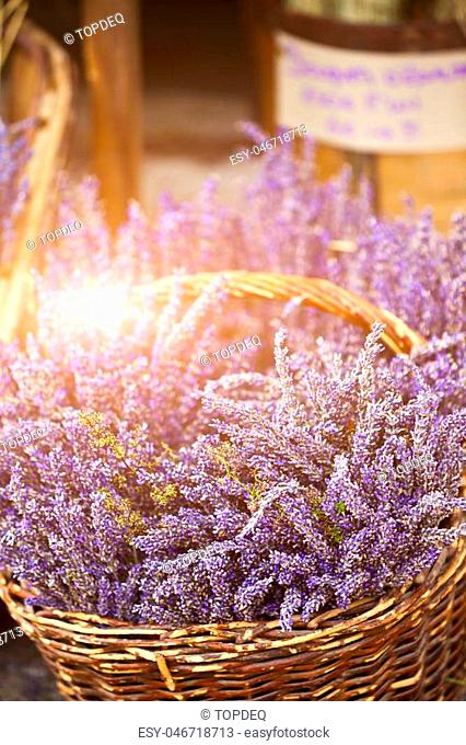 Lavender bunches selling in a outdoor french market. Vertical shot with selective focus