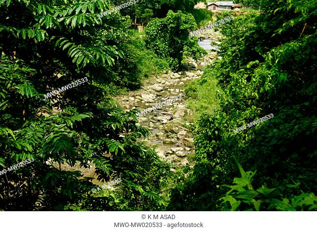 A mountain stream in Khagrachari, one of the hill districts under Chittagong division, in Bangladesh Locally known as 'Chengmi'