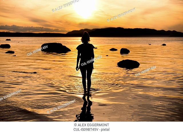 Young woman looking out at sunset, silhouetted rear view, Quadra Island, Campbell River, Canada