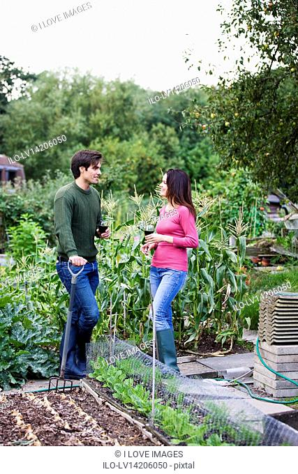 A young couple on an allotment taking a break, drinking wine