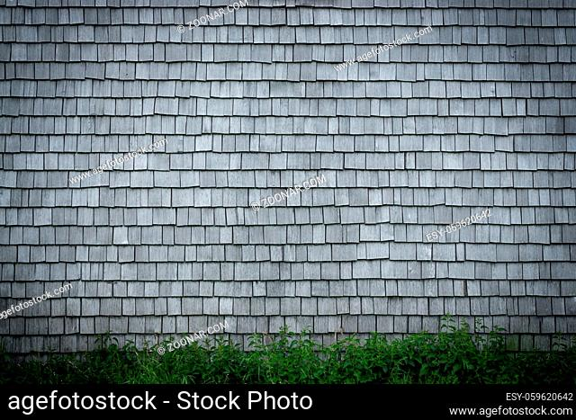 Old weathered Shingles wooden wall background. Traditional shakes with nice grey texture with nice vignetting spotlight and Grass in Foreground