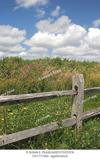 A split-rail fence at the edge of a field in summertime, Eastham, Cape Cod, Massachusetts