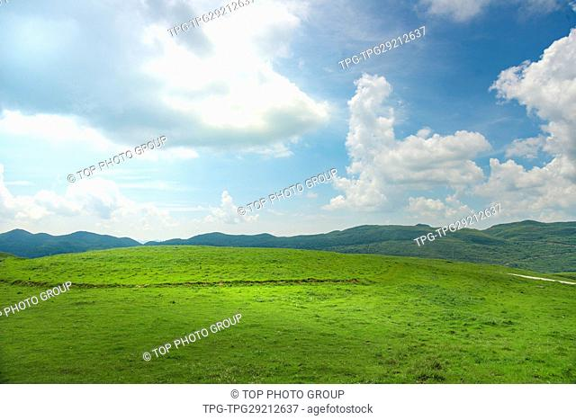 Beauty in nature. Sunlight through white cloud; blue sky upon green lawn