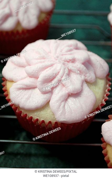 A floral Valentine's Day cupcake