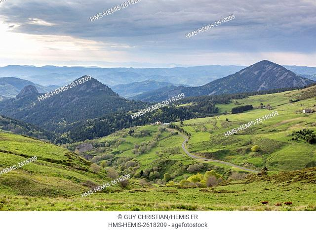 France, Ardeche, Monts d'Ardeche Regional Natural Park, Les Sucs area (old volcanos), Col (path) Croix de Boutieres