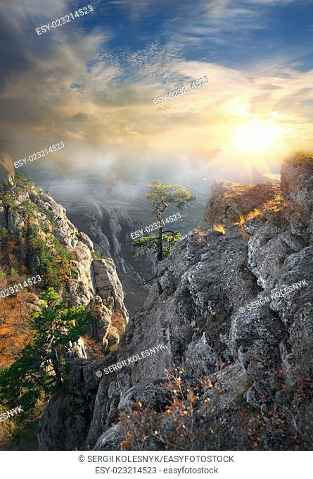 Fog in the mountains in sunny morning