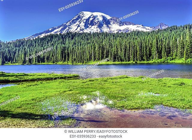 Reflection Lake Mount Rainier Snow Mountain Paradise Mount Rainier National Park Washington