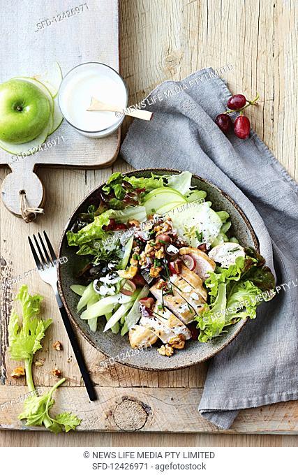 Chicken and waldorf salad dinner bowl