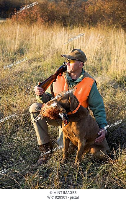 A bird hunter and his trained dog with a dead pheasant in its mouth. Retriever