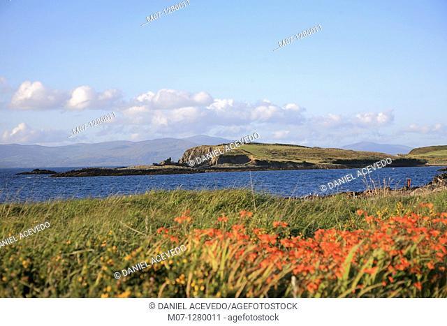 Lamb's head peninsula, Cork, co Cork, Ireland. Bantry bay