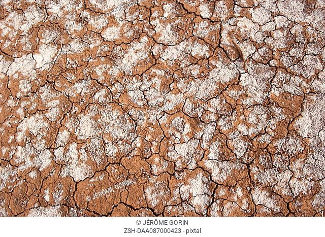 Close-up of dry, cracked soil