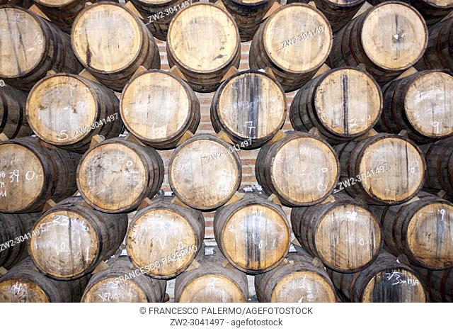 The barrels full of the Mexican distillate. Tequila, Jalisco. mexico