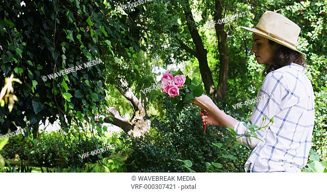 Woman cutting flower stem in garden