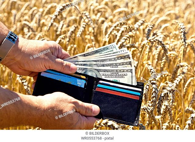A farmer with a purse on crop field.Subsidies in agriculture