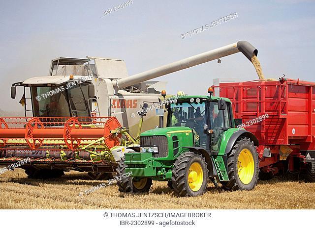 Barley harvest, winter barley is being threshed, Saxony, Germany, Europe