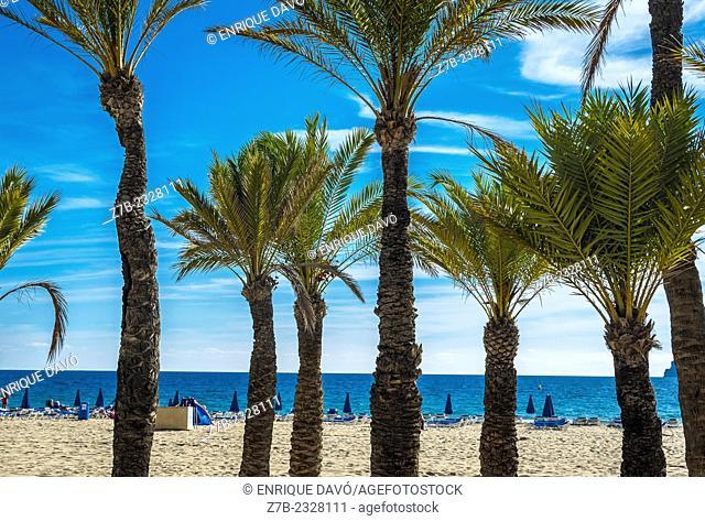 View of some closed sunshides in Benidorm beach, Alicante zone, Spain