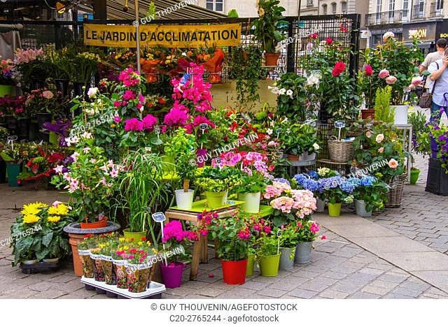 Flower shop, Nantes, Loire Atlantique, France