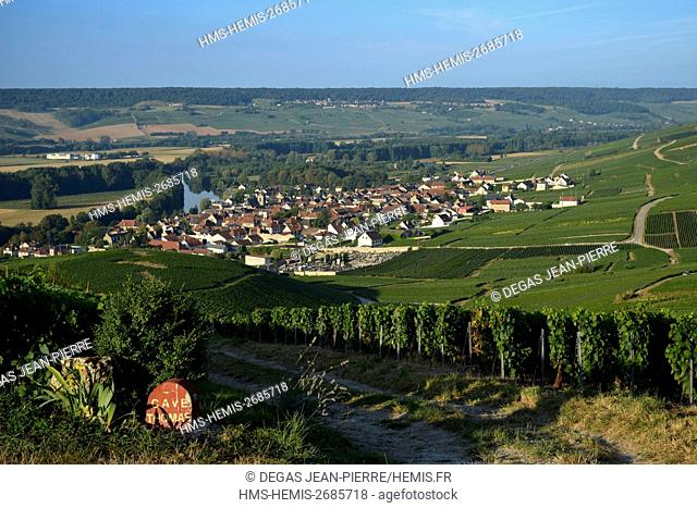 France, Marne, Cumieres, Marne Valley, border of demarcation of plot of land in front of Champagne vineyard ranked Premler Cru with a village in edge of the...