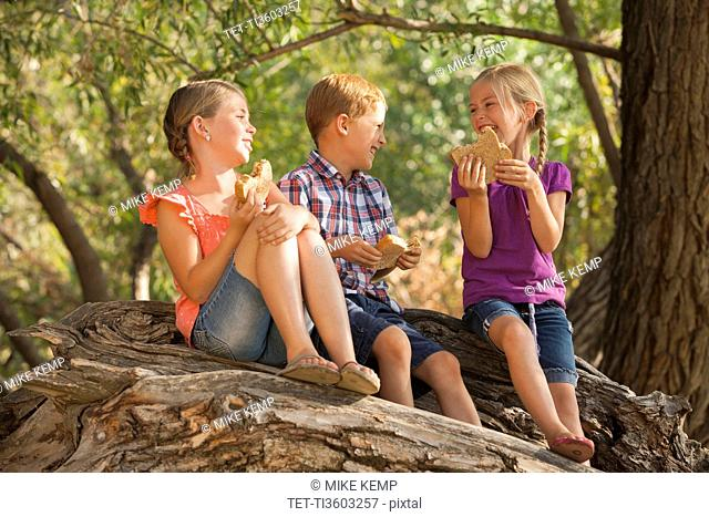 Three kids 4-5, 6-7 eating peanut butter sandwiches together on tree