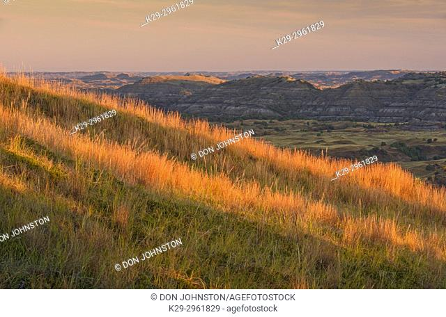 Grassy slopes and badlands in late summer, from Buck Hill, Theodore Roosevelt NP (South Unit), North Dakota, USA