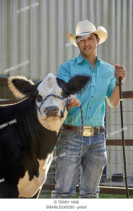 Caucasian man posing with cow