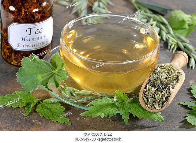 Green Oat tea, Common oat, Nettle herb, Alpine lady's mantle / (Avena sativa), (Urtica dioica), (Alchemilla alpina)