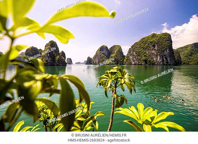 Vietnam, Gulf of Tonkin, Quang Ninh province, swimming in the Bay of Ha Long (Vinh Ha Long) listed as World Heritage by UNESCO (1994)