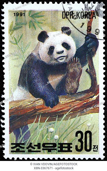 Giant panda, Ailuropoda melanoleuca, postage stamp, North Korea, 1991