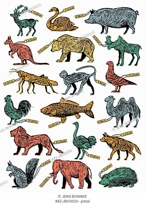 A poster depicting a group of animals
