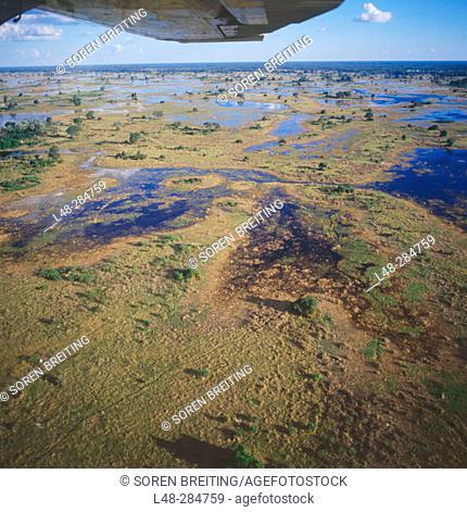 Okavango Delta seen from a small plane. Botswana