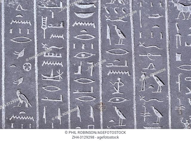 Egyptian hieroglyphs on the Sarcophagus of the 'God's Wife' Ankhnesneferiba. 'Late Period' (664-332 BC) British Museum, Bloomsbury, London, England, UK