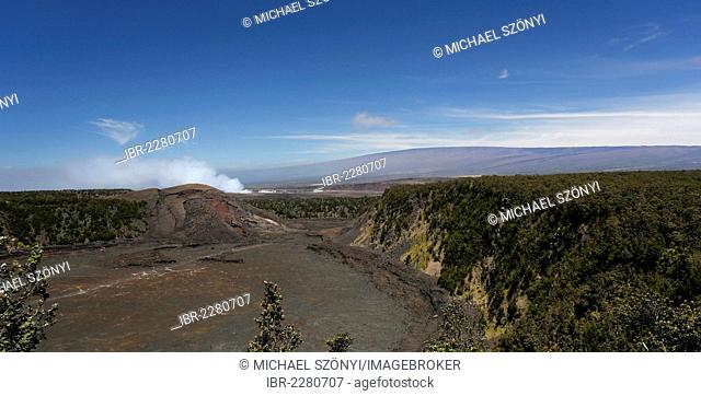 Panoramic view across the Kilauea Iki crater towards Halema'uma'u, Mauna Loa at the back, Big Island, Hawaii, USA