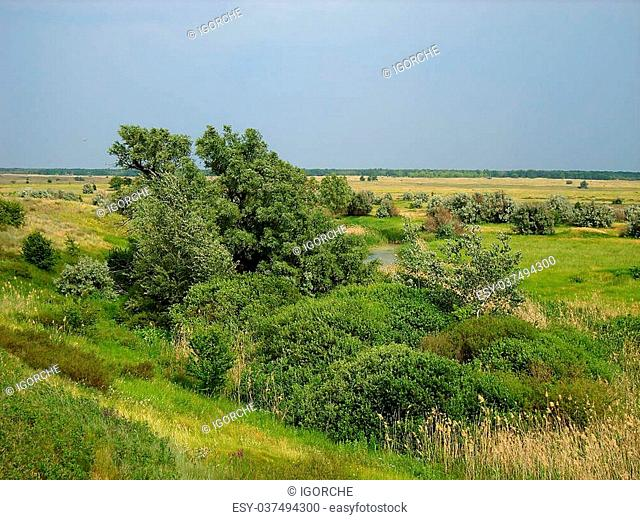 landscape in steppe
