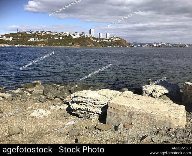Vladivostok as seen from the Lighthouse Tokarevskaya cat in Vladivostok, Far East, Russia, Russian
