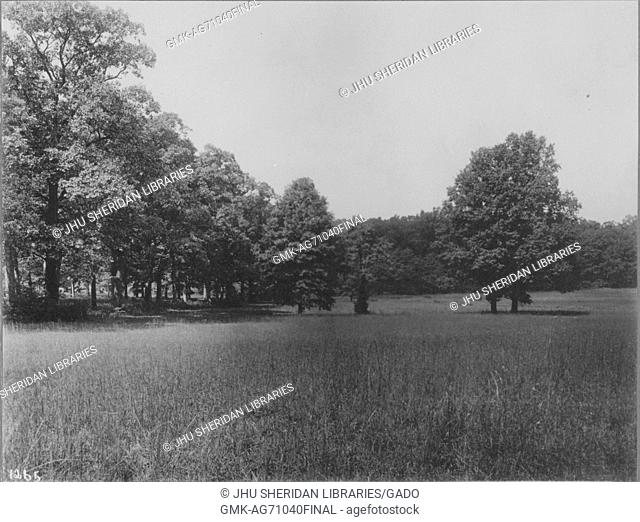 Unoccupied land near Roland Park and Guilford, there is a lot of untrimmed grass, there are a bunch of trees in a cluster on the field and trees also line the...