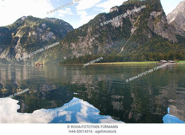 beim Almabtrieb von der Saletalm über den Königssee zur Seelände und nach Hause in den heimischen Stall in der Schönau