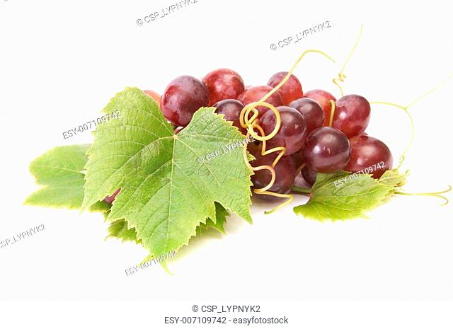 Juicy grape on a white