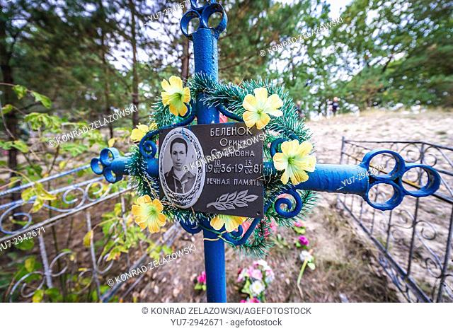 Artificial flowers on cemetery in abandoned Zymovyshche village Chernobyl Nuclear Power Plant Zone of Alienation in Ukraine