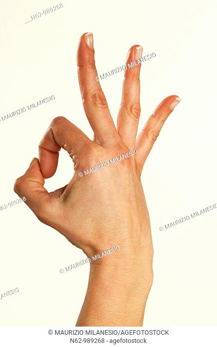 Concepts expressed through sign language