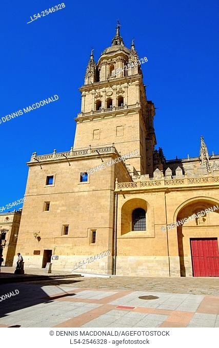 Old New Cathedral Salamanca Spain Castile Leon ES