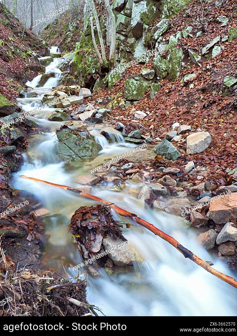 Marianegre stream with small waterfalls. Autumn time at Montseny Natural Park. Barcelona province, Catalonia, Spain