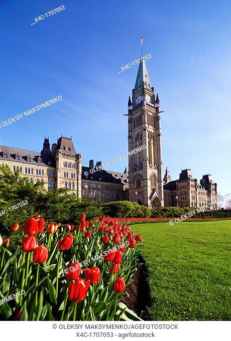 Tulip festival  The Parliament Building  Ottawa, Ontario, Canada springtime scenic May 2012