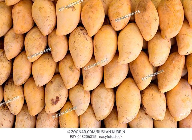 Fresh yellow mango on the market in Thailand