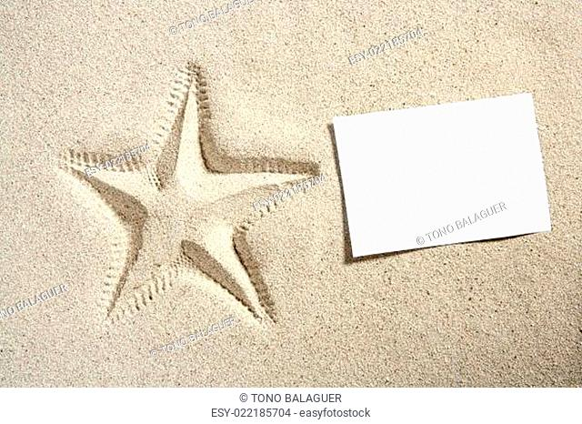 blank paper beach sand starfish pint summer