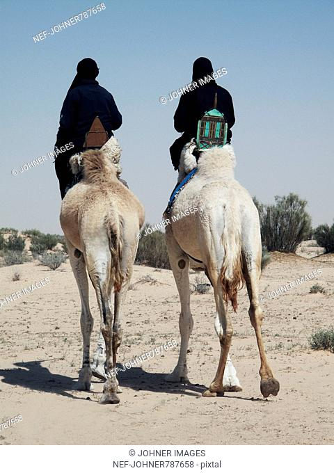 Two Bedouins riding on Dromedaries, Tunisia