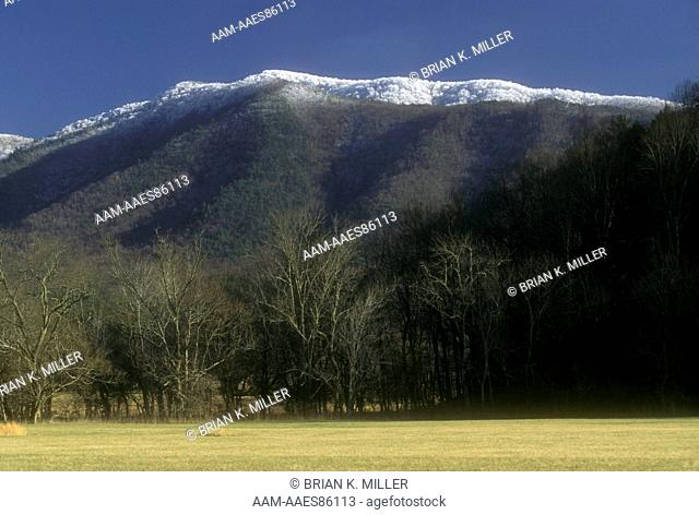 Great Smoky Mountains N.P. TN:Snow-covered and hoar frosted Mt. Tops from Cades Cove, Tennessee