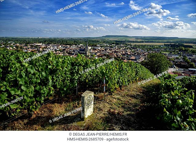 France, Marne, Ay, Marne Valley, border bounding plot of land in a vineyard of Champagne listed as World Heritage by UNESCO with a village and a church in the...