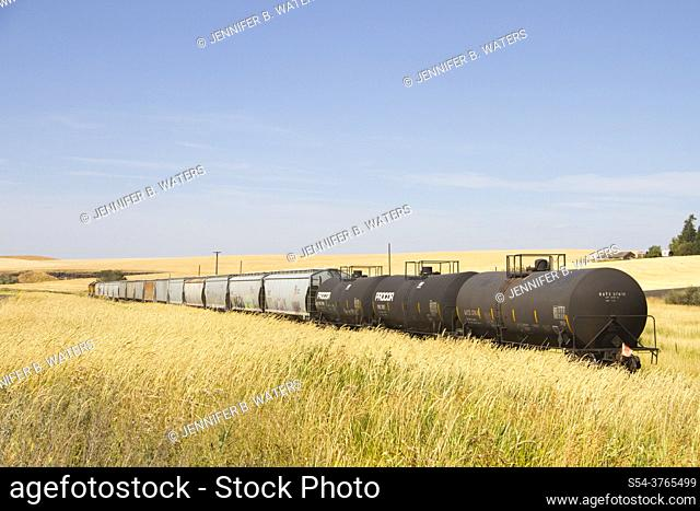 Union Pacific train carrying grain cars and chemicals in eastern Washington, USA